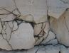 sp-1007-46-stein